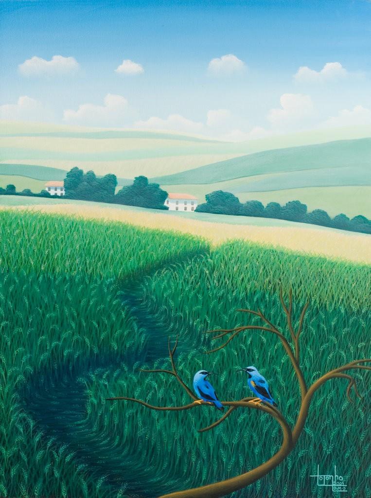 Brazilian landscape, blue birds, fields