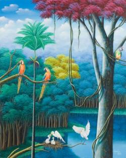ara's and parrots, arara's e perequito's
