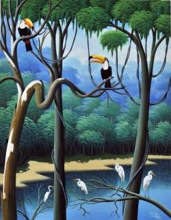 toucan, tucano