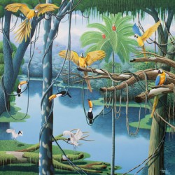 Brazilian birds, passaros