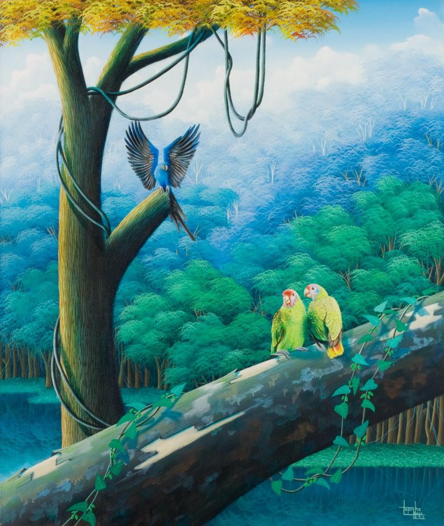 Brazilian rainforest, parrots, paiting