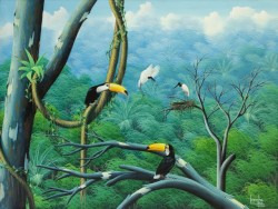 toucans, tucanos, rainforest