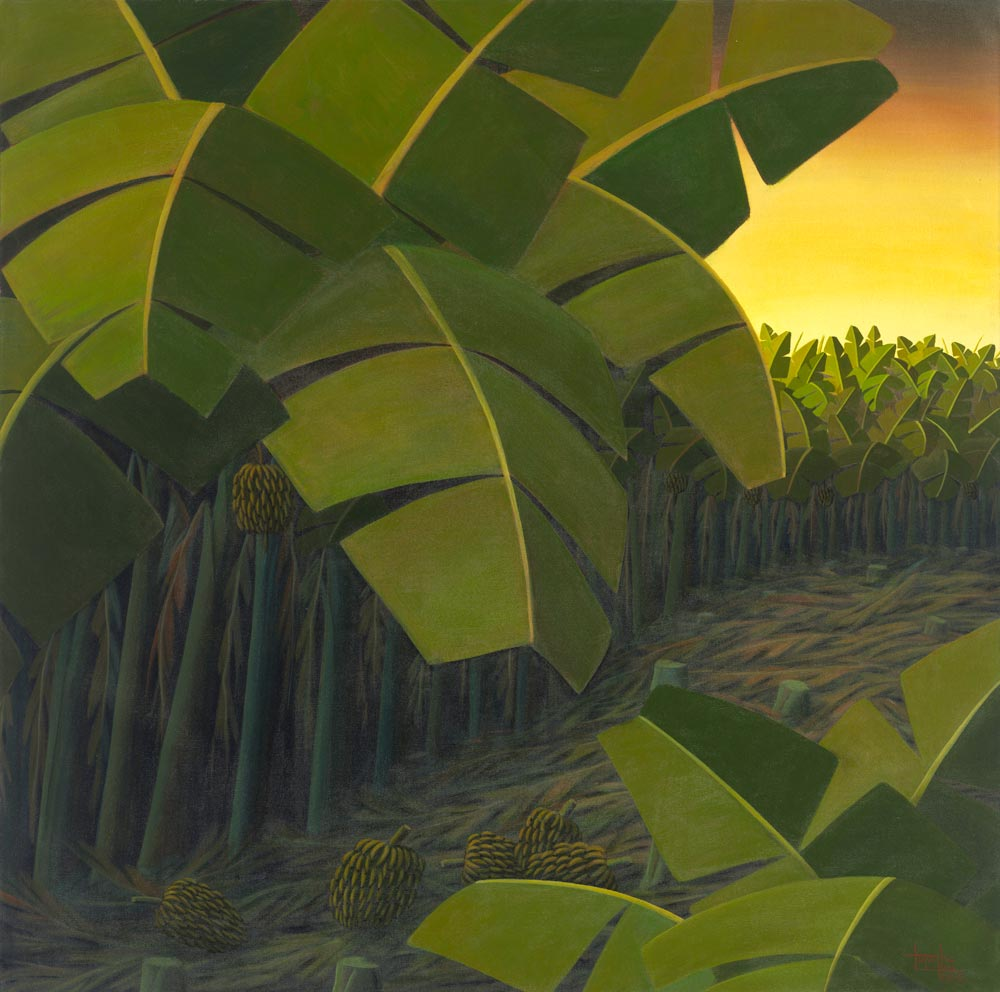 banana leafs in sunset, green and orange